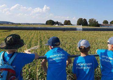 Kindergruppe besucht Mais-Labyrinth